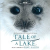 Tale of a Lake